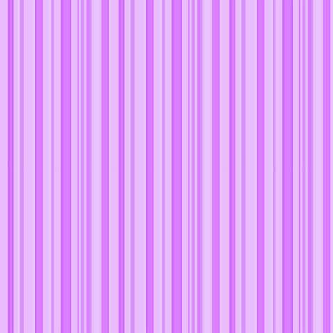 Papel de parede Safari Frieds (Infantil) - Cód. SF6217