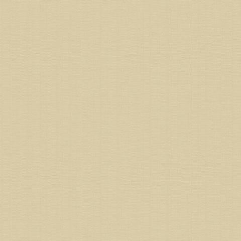 Papel de parede Hoops (Moderno) - Cód. HP7559