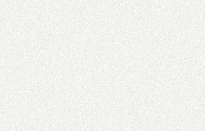 Papel de parede Iris cod. 6616-1