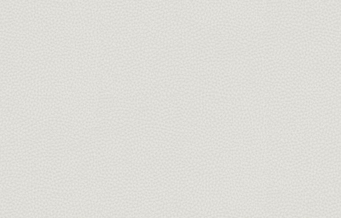 Papel de parede Iris cod. 6616-2