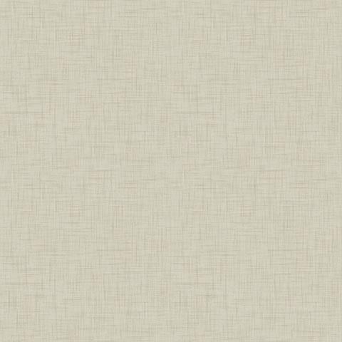 Papel de parede Choice premier (Liso) - Cód. CP 9029