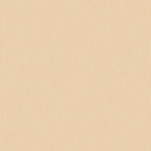 Papel de parede Choice premier (Liso) - Cód. CP 9035