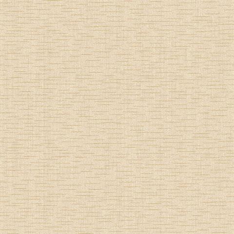 Papel de parede Choice premier (Liso) - Cód. CP 9045