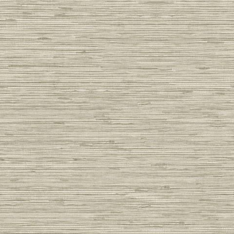 Papel de parede Choice premier (Liso) - Cód. CP 9064