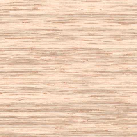 Papel de parede Choice premier (Liso) - Cód. CP 9069