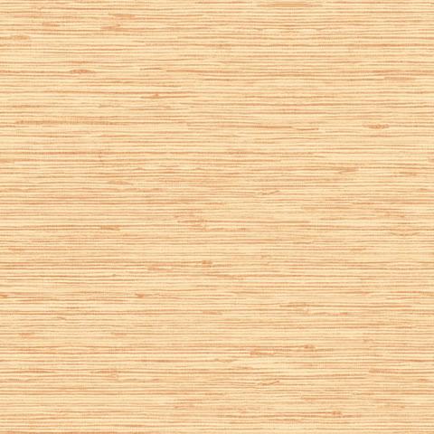 Papel de parede Choice premier (Liso) - Cód. CP 9071