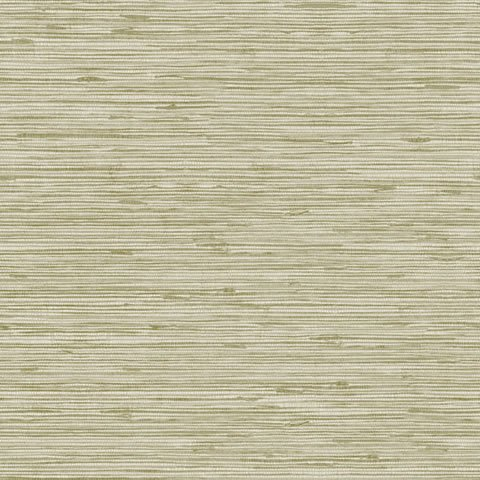 Papel de parede Choice premier (Liso) - Cód. CP 9075