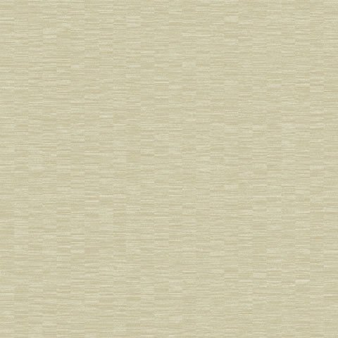 Papel de parede Choice premier (Liso) - Cód. CP 9099