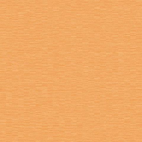 Papel de parede Choice premier (Liso) - Cód. CP 9100