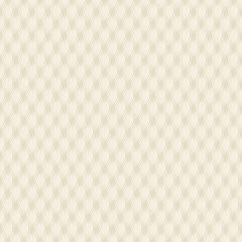 Papel de parede Choice premier (Liso) - Cód. CP 9123