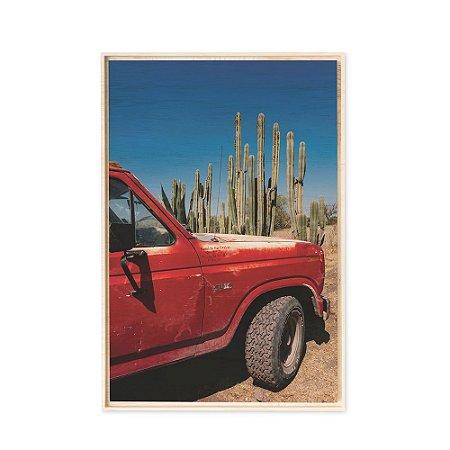 Collection - Mexico DF