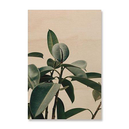 Print - Planta I