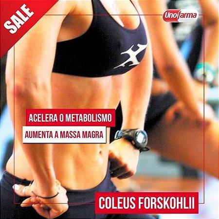 COLEUS FORSKOHLII 300MG 60 CÁPSULAS - GANHO DE MASSA MUSCULAR