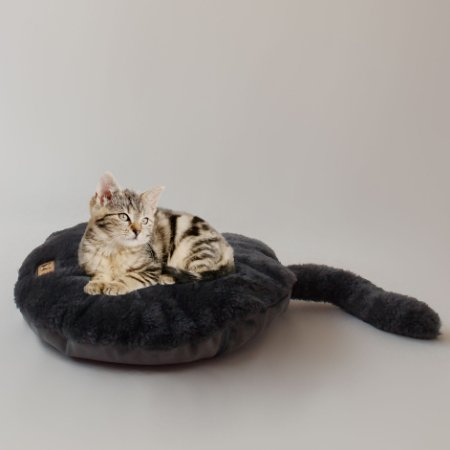 Almofada Beds for Pets Kitty Chumbo