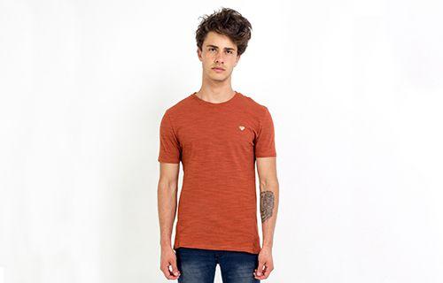Camiseta Flame Lisa Argila