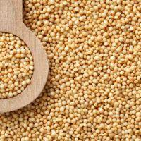 Amaranto em Grãos - A granel