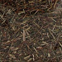 Quebra-Pedra Folhas - A Granel
