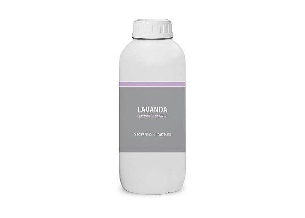 1L Óleo essencial de Lavanda Brasileira (Lavandula dentata)