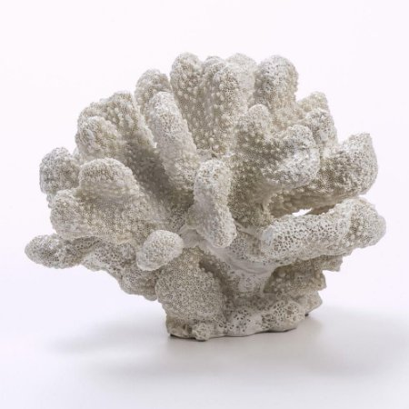 Coral Decorativo Resina 17X15X11CM