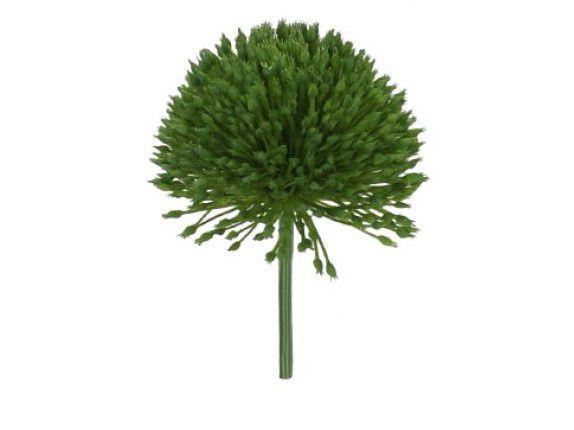Suculenta Pom Pom Artificial 13cm
