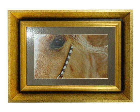 Quadro Horses Look Moldura de Madeira Dourado 48x36cm
