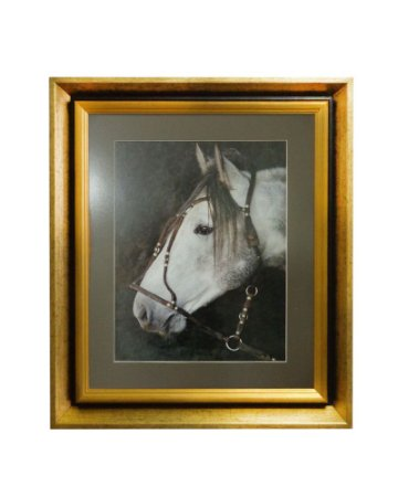 Quadro Horses White Head Moldura de Madeira Dourado 50x60cm