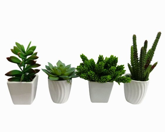 Kit 4 Mini Suculentas em Vaso de Cerâmica 10x15cm