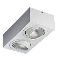 Luminária de Sobrepor Orientável 2xPAR30 Curta 17x34x10cm