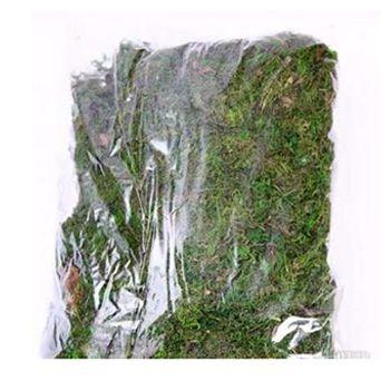 Pacote Musgo Tingido Verde 50g