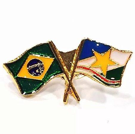 Pim Bótom Broche Bandeira Estado De Roraima Folheado A Ouro