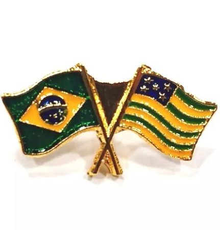 Pim Bótom Broche Bandeira Do Estado De Goiás Folheado A Ouro