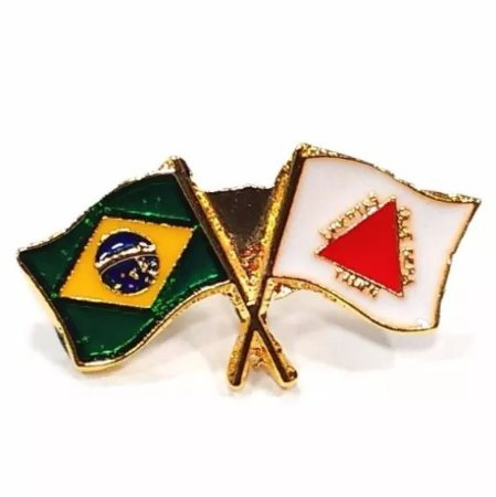 Pim Bótom Broche Bandeira Do Estado De Minas Gerais Folheado A Ouro