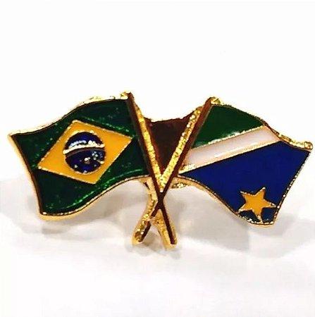 Pim Bótom Broche Bandeira Estado Do Mato Grosso Sul Folheado A Ouro