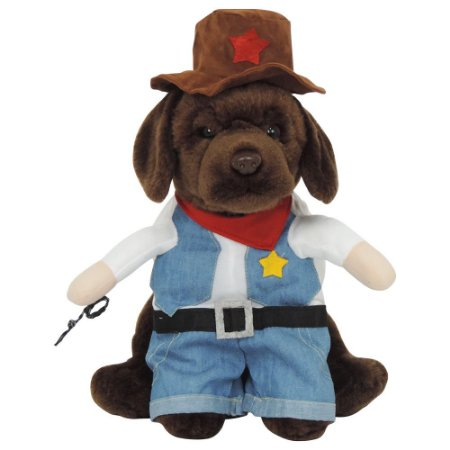 Fantasia Woody Toy Story PS-39