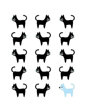 Quadro Decorativo Poster Gato Preto