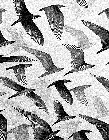 Quadro Decorativo Poster Pássaros em Desenho