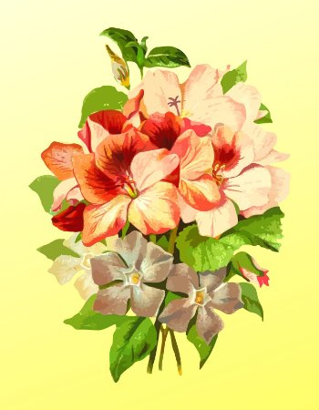 Quadro Decorativo Poster Rosas