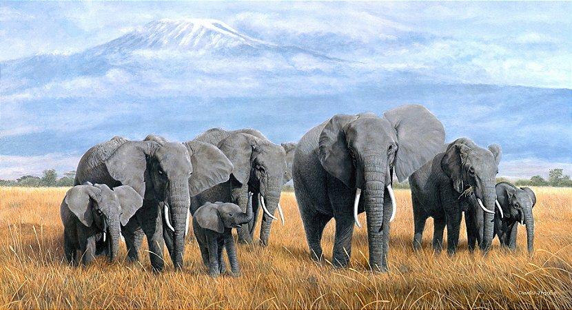 Quadro Decorativo Poster Pintura de Elefantes