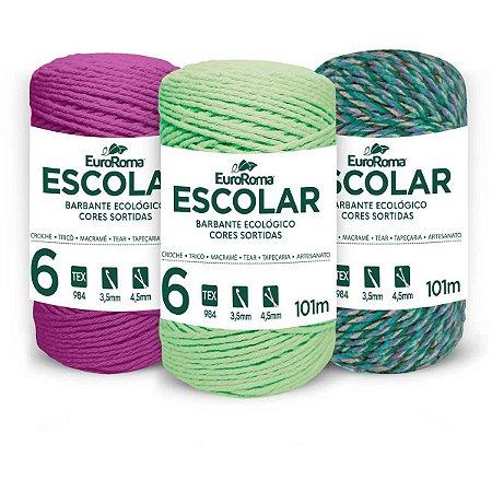 Barbante colorido 100g 4/6 Fios Rolo 101m Sortid Euroroma