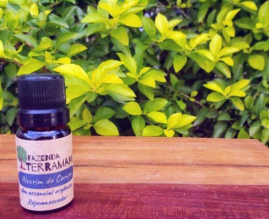 Óleo essencial orgânico de Alecrim do Campo (Cerrado)