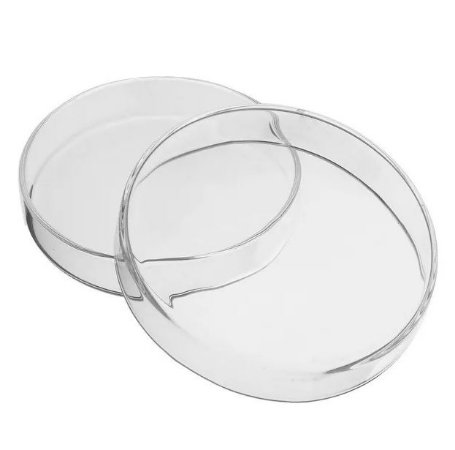 Placa de Petri de Vidro - 150 X 20cm - C/05 - PRECISION