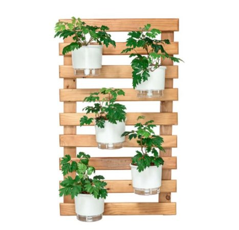Horta Vertical Caramelo 60cm x 100cm, 5 Vasos e Suporte Branco