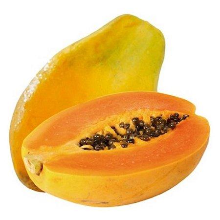 Muda Mamão Papaya (Carica Papaya)