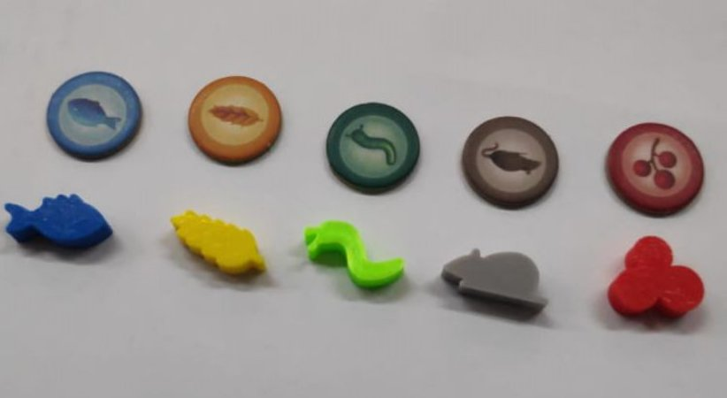 Kit com 50 Recursos 3D- para o Jogo Wingspan