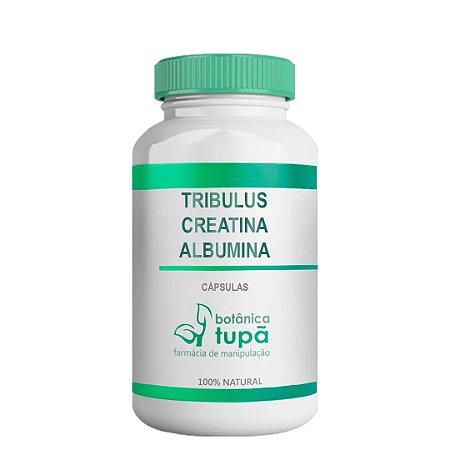 Suplemento para Reparação Muscular e Reposição Proteica