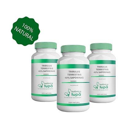 Tribulus 500mg Com Saponinas 40% Aumento da massa muscular - 3 Frascos