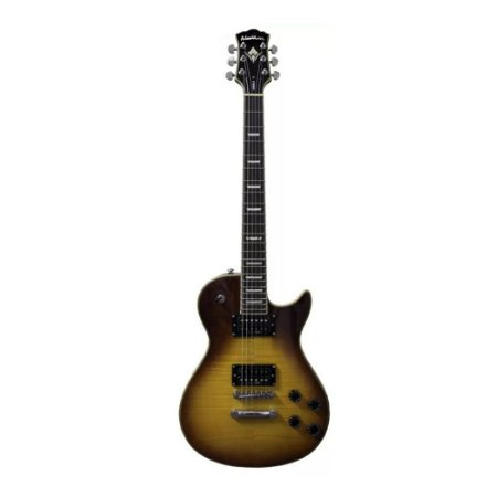 Guitarra Idol Washburn WINDLX FHB Flame Honey Burst