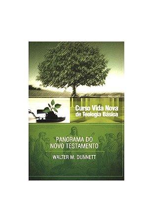 CURSO VIDA NOVA DE TEOLOGIA BÁSICA VOL. 3 - PANORAMA DO NOVO TESTAMENTO