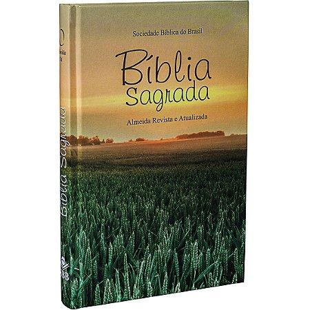 BÍBLIA RA EDIÇÃO MISSIONÁRIA TRADICIONAL