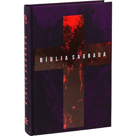 BÍBLIA NAA CAPA DURA CRUZ/VM